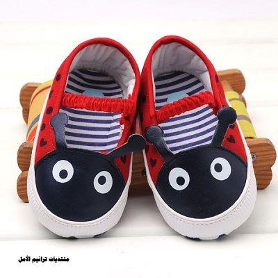 أناقة الحذاء2014 ، أحذية بنوتات 2014 110708.png