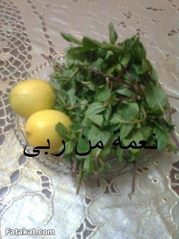 عصير الليمون بالنعناع2014 - طريقة عمل عصير الليمون بالنعناع 2014 99285.png